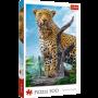 Puzzle Trefl Léopard sauvage de 500 Pièces