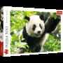 Puzzle Trefl Panda Géant de 500 Pièces